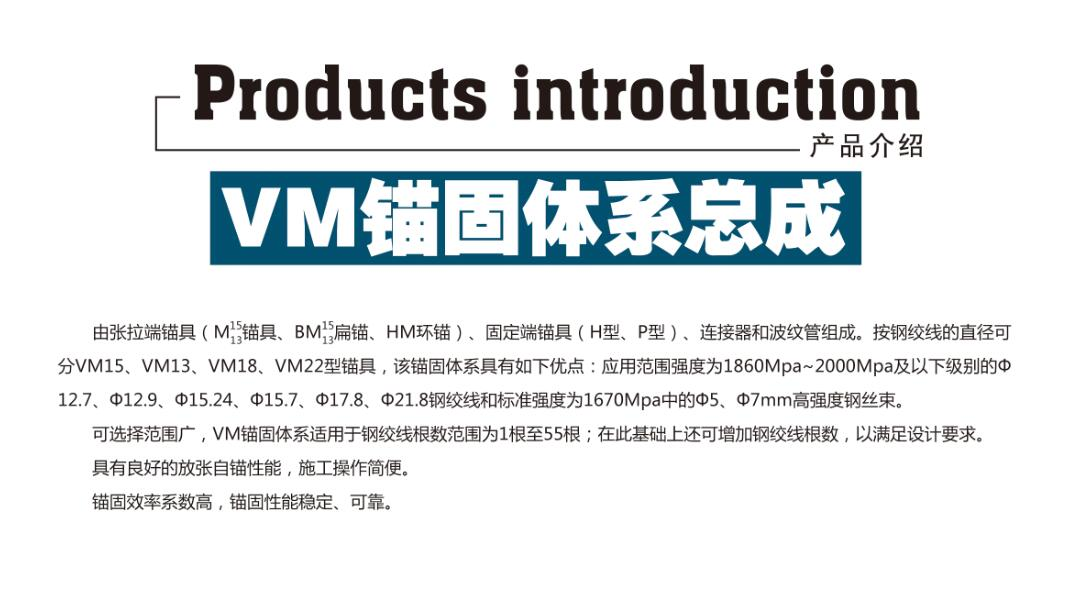 VM锚固体系总成介绍.jpg